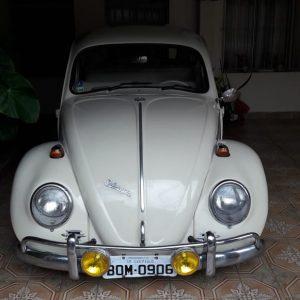 VW Beetle 1966 #F19.031