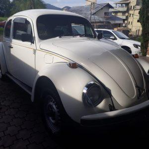 VW Beetle 1994 #F19.032