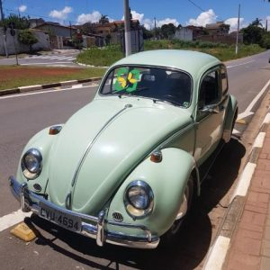 VW Beetle 1969 #F19.001