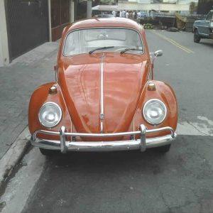 VW Beetle 1964 #F19.002