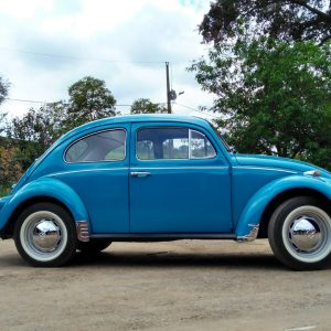 VW Beetle 1971 #F19.006