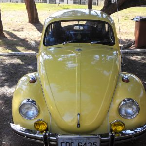 VW Beetle 1973 #F19.030