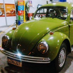VW Beetle 1976 #F19.043