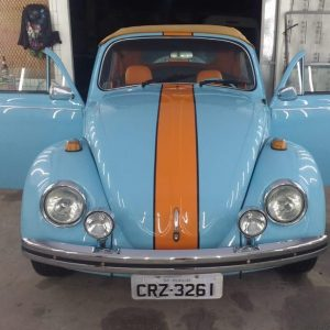 VW Beetle 1976 #F19.047