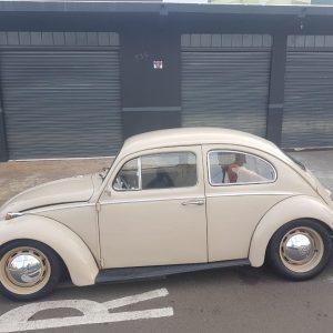 VW Beetle 1969 #F19.058