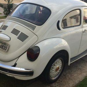 VW Beetle 1979 #F19.057