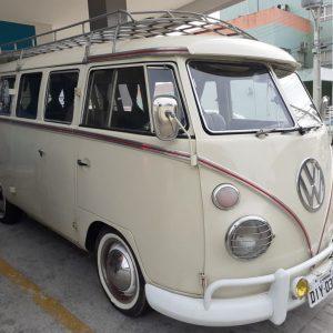 VW Bus T1 1974 #K19.162