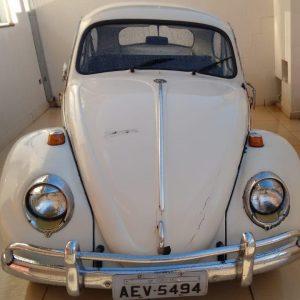 VW Beetle 1965 #F19.062