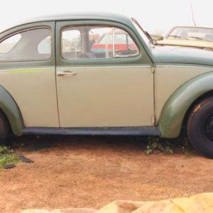 VW Beetle 1973 #F19.068