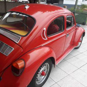 VW Beetle 1981 #F19.069
