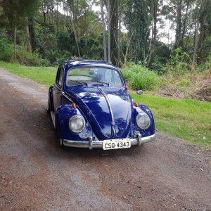 VW Beetle 1962 #F19.076