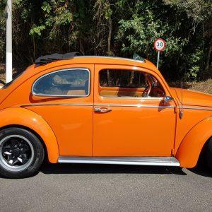 VW Beetle 1963 #F19.073