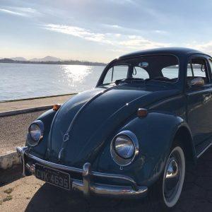 VW Beetle 1968 #F19.078