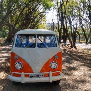 VW Bus T1 1975 #K19.213