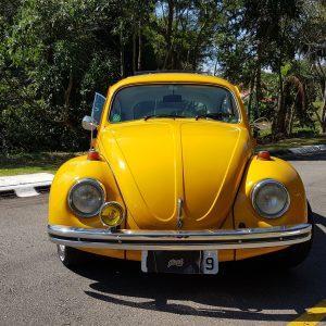 VW Beetle 1973 #F19.071