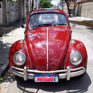 VW Beetle 1967 #F19.082