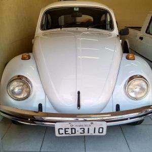 VW Beetle 1983 #F20.099