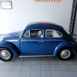 VW Beetle 1966 #F20.110