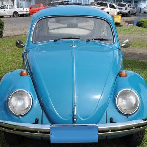 VW Beetle 1971 #F20.117