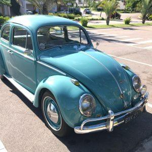 VW Beetle 1961 #F21.124