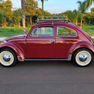 VW Beetle 1964 #F21.130