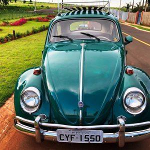 VW Beetle 1965 #F21.131