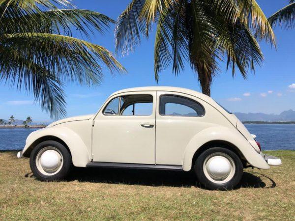 VW Beetle 1965 #F21.134
