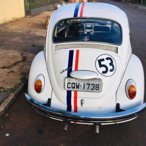 VW Beetle 1974 #F21.136