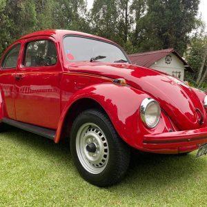 VW Beetle 1994  #F21.139