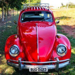 VW Beetle 1969 #F21.146