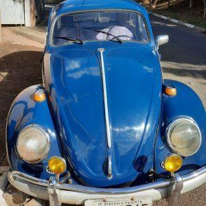 VW Beetle 1965 #F21.154