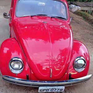 VW Beetle 1976 #F21.160