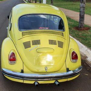 VW Beetle 1977 #F21.168