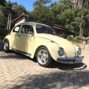 VW Beetle 1977 #F21.167
