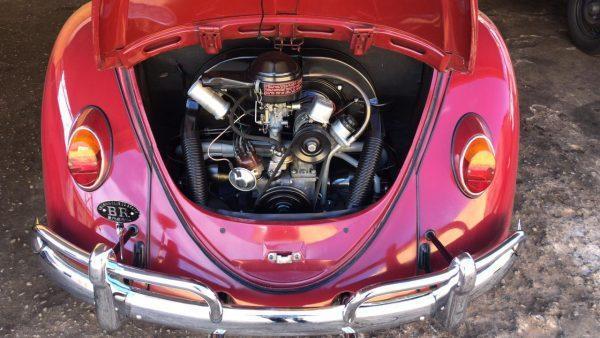 VW Beetle 1967 #F21.169