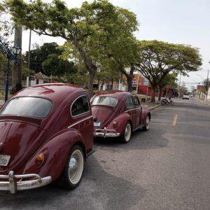 VW Beetle 1965 #F21.193